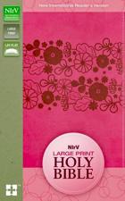 NIRV Large Print Holy Bible Pink
