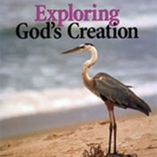 God's Creation Series