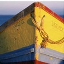 Buoyancy & Boats